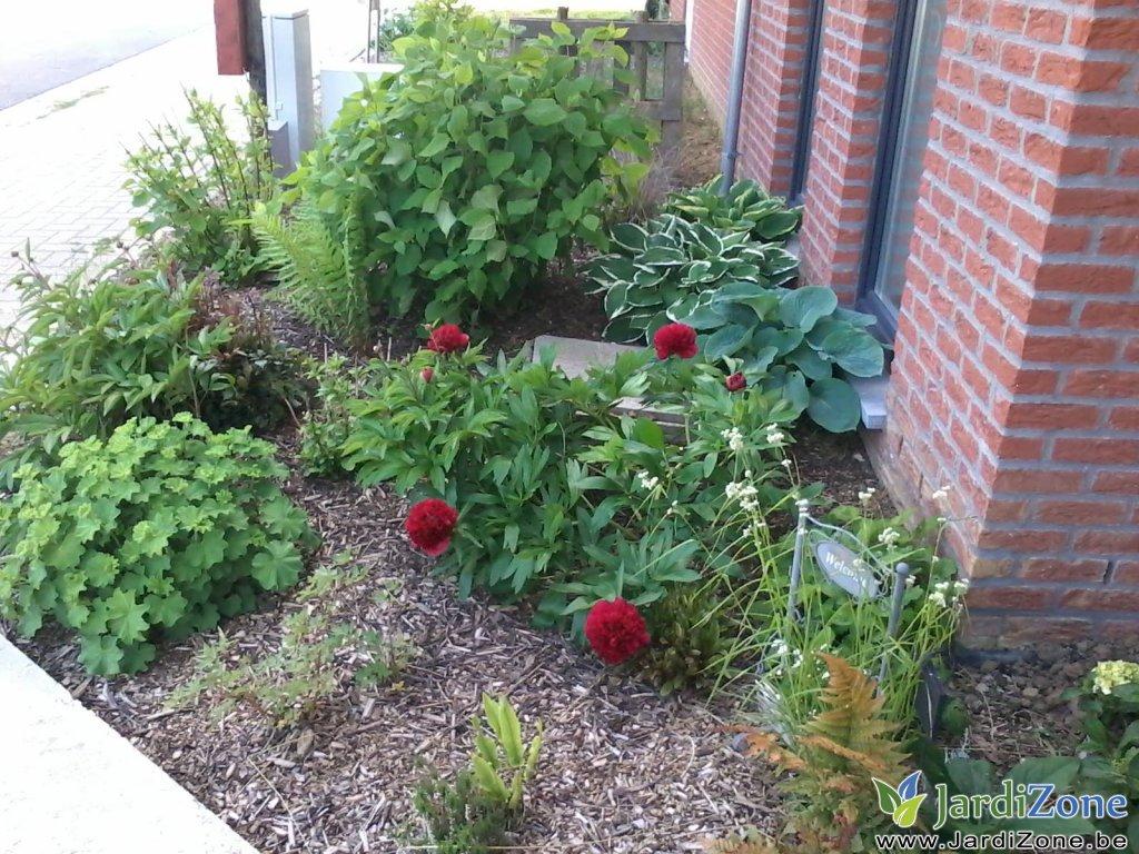 que planter dans un sol argileux jardizone. Black Bedroom Furniture Sets. Home Design Ideas